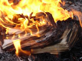 Burning Paper 1898680 by StockProject1