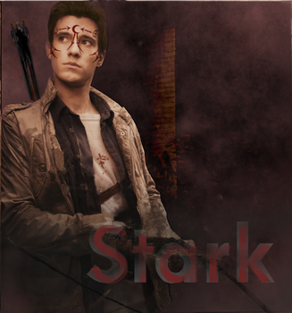 Stark by HousexOfxNight