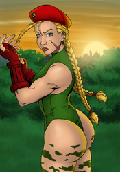Cammy Colors by Cartoonpants