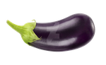 Vegetable eggplant on a transparent background. by PRUSSIAART