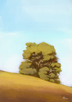 Tree on a Summer Hill by Seyorrol