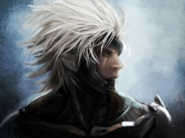 Raiden by ElusiveDrifter