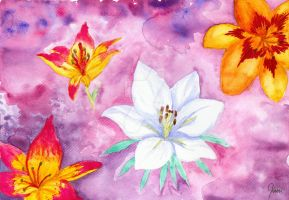 Lilies by LoVeras