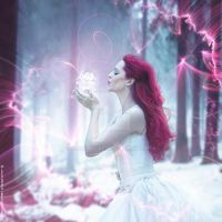 Ice Crystal by ForestGirl