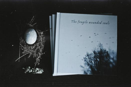 Artbook The fragile wounded souls by NataliaDrepina