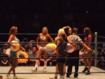 WWE 9.4.10 - Diva Beach fight by BigJohnnyCool