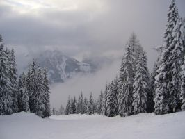 Wonderful Winterland 15025941 by StockProject1