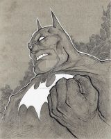 Dark Knight Batman by JamileJohnson