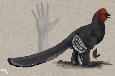 Anchiornis huxleyi by DanneArt