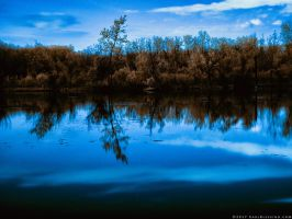 Tree in the Nightly Lake (Infrared After Dark) by KBeezie