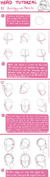 Head Tutorial Part 1 by Biology-of-Pencils