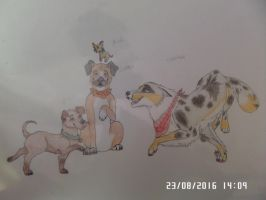 Cooper, Billy, Gunther and Marcel by AuroreMaudite09