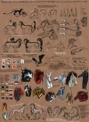 Species Reference - Loupdrakes by rage1986