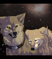Hurt and the Cold by Lost-Wolf-Soul