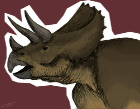 Colorful Triceratops by Arfonyy
