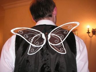 Fairy Godfather Wings by JaffaCakeLover