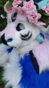 finished fursuit (Amethyst the Dutch Angel Dragon) by Dibs-Snowheart