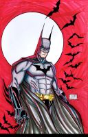 Batman Color W.I.P. by MetaWorks