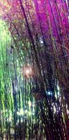Bamboo Copse 2 by VicDillinger