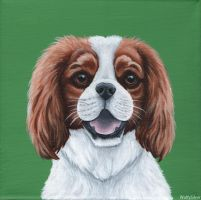King Charles Spaniel by wolfysilver