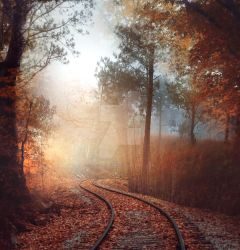 Autumn railroad - premium stock by Aeternum-designs