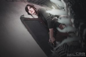 Prison Break - Rise of the Tomb Raider by skyseed21