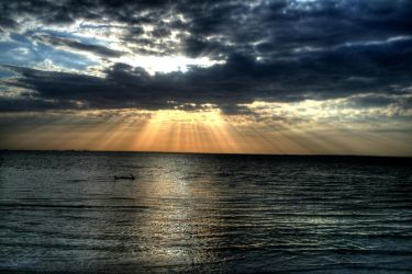 Tampa Bay Sunset by jbugbee