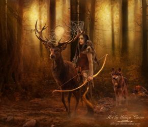 Dreamcatcher by silviya