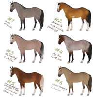 Spice Horse Designs by Tattered-Dreams