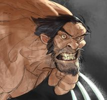 Wolverineeee by Ramonn90