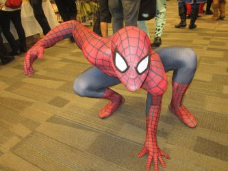 Matsuricon12- SpiderMan by WolfK