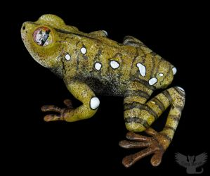 Gourd Frog #160 - Map Tree Frog by ART-fromthe-HEART