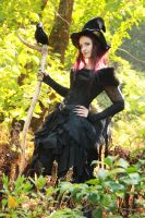 Stock - Halloween witch with raven  pose 6 by S-T-A-R-gazer