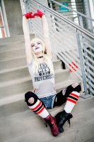 Playful Harley by Arctic-RevoIution