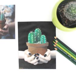 Cactus Drawing by Bobblegary