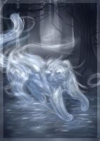 expecto patronum by oseille