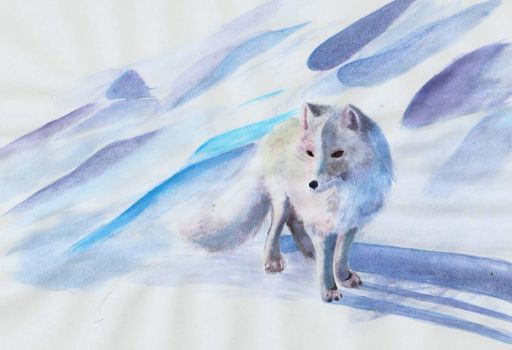 Arctic Fox Watercolor by Joava