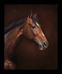 R.I.P. Hickstead by Yellown