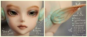 Rosette Fir boy - faceup and mods by hiritai