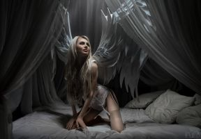 Angel of Light I by FlexDreams