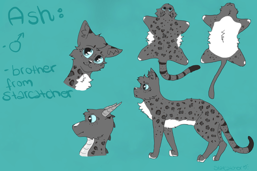 reference sheet from Ash by starcatcher-night