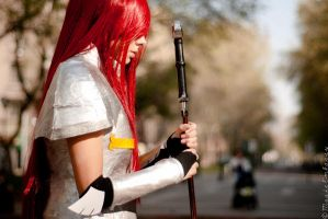 Fairy Tail: Erza by MadeinPlute