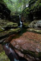 Ricketts Glen by Brettc