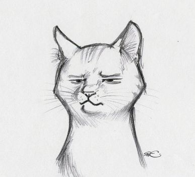 Hangover Kitty by RobtheDoodler