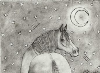 Horse in the half-moon light by Norpan95