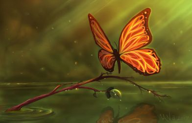 Butterfly Over Water by brokeman29