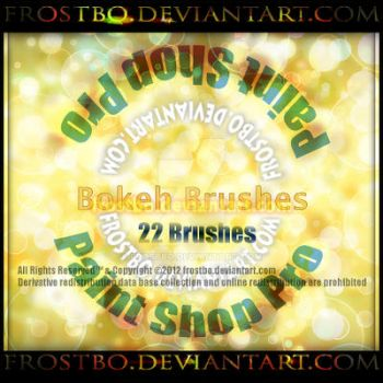 Paint Shop Pro Bokeh Brush 22 Brushes by FrostBo