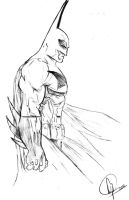 The Dark Knight by TheFlawlessCowboy