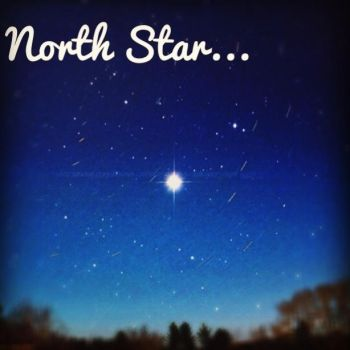 The Only North Star I Would Follow This Far by RadialSprite24
