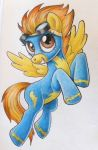 Spitfire 2016 by andpie